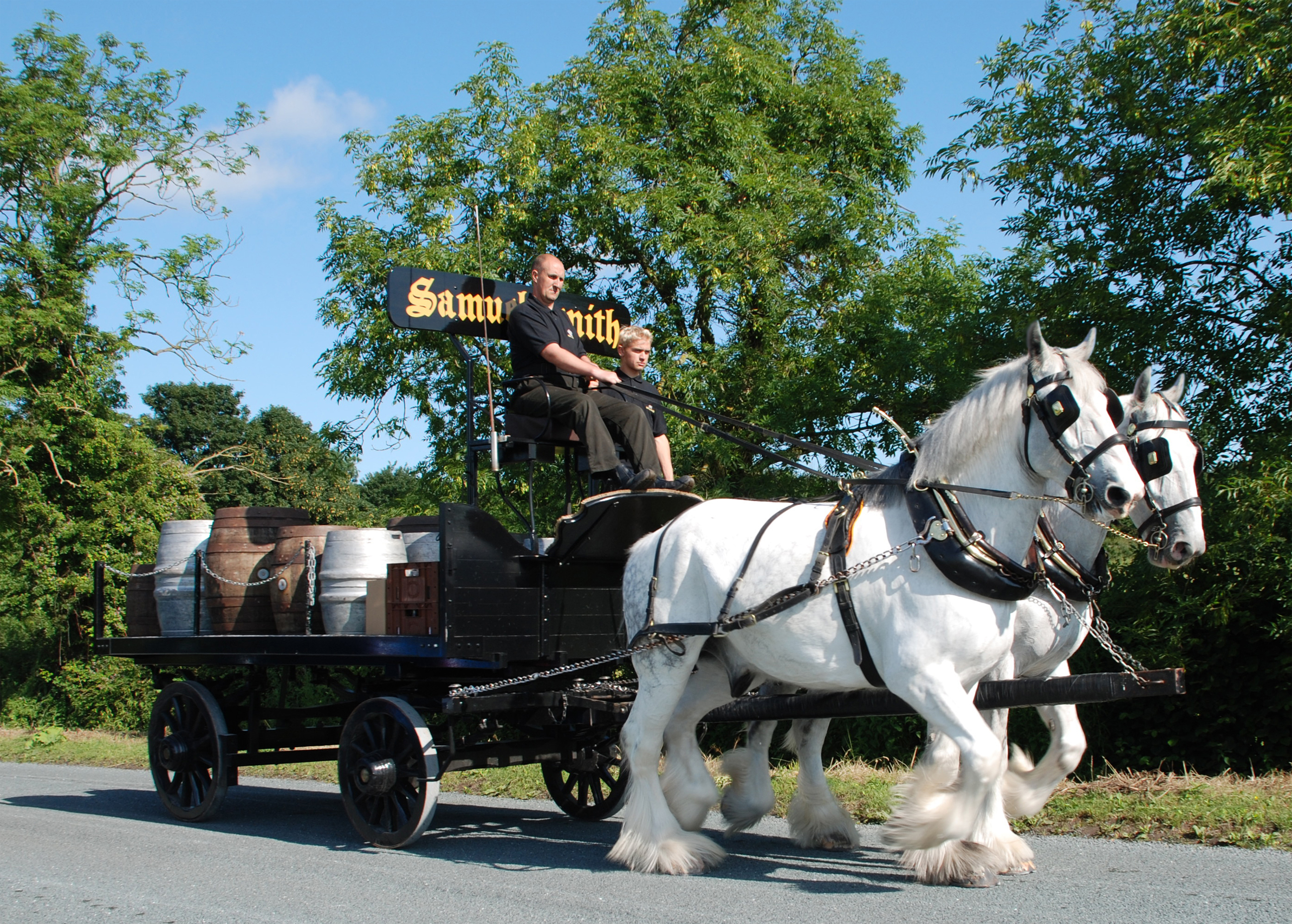 /system/uploads/storage/article_image/asset/163/shire_horse_big.jpg
